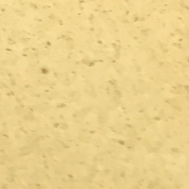 SCRAPED PLASTER NACRE